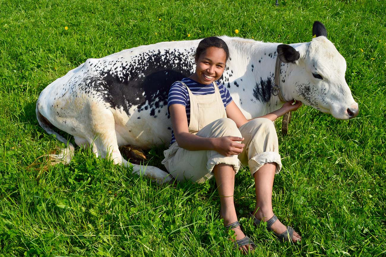 Girl and cow relaxing in the field