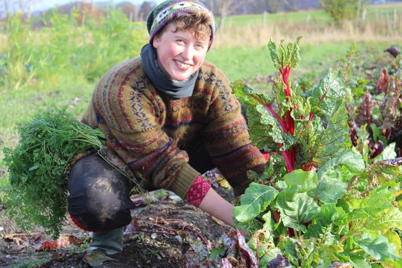 Jente i gronnsaksaker plukker gulrot og bladbete