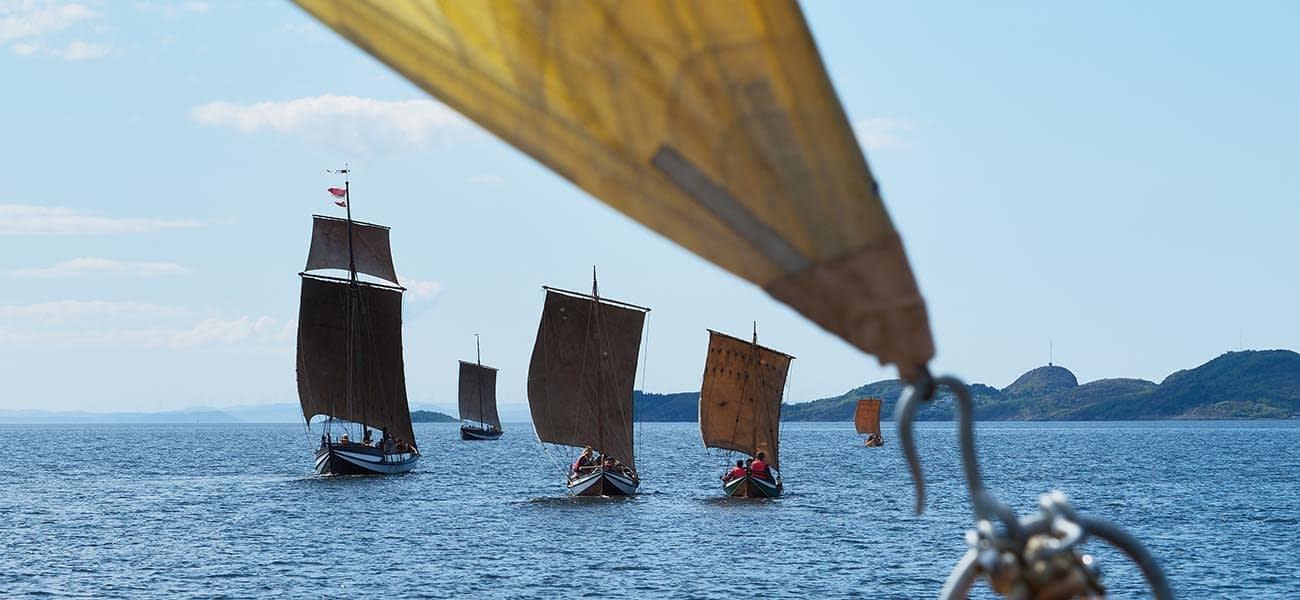 Fem seilbåter i medvind